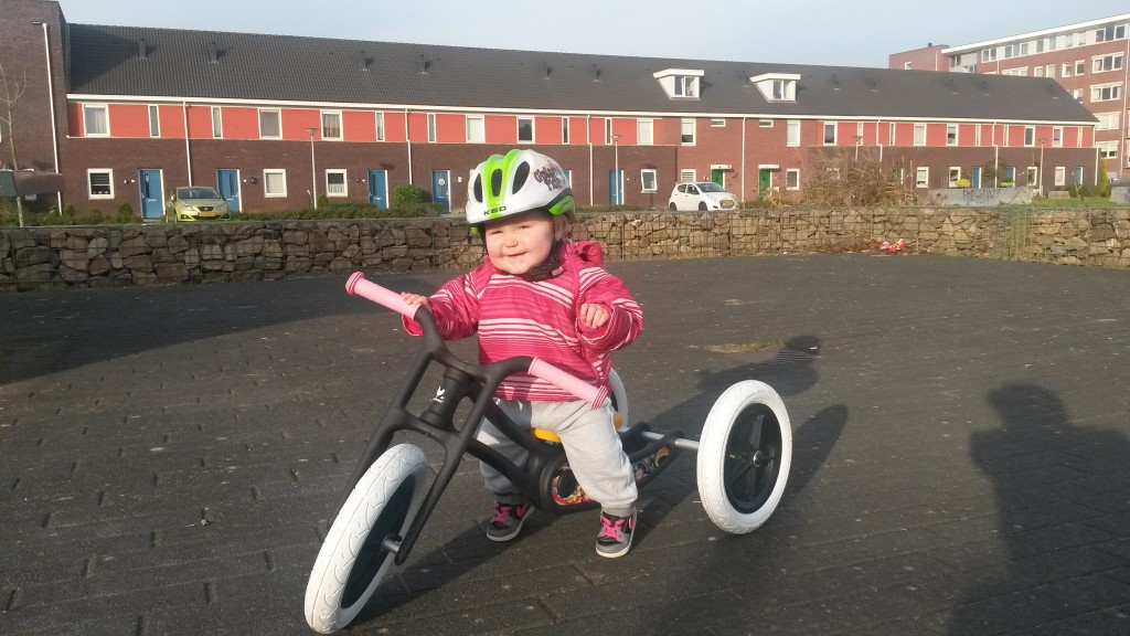 Whisbone bike trike recycled